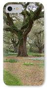 Majestic Live Oaks In Spring IPhone Case