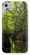 mangrove forest in Costa Rica 1 IPhone Case