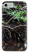 Mangrove Forest In Los Haitises National Park Dominican Republic IPhone Case