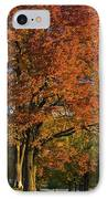 Maple Trees IPhone Case