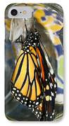 Monarch In A Jar IPhone Case by Steve Augustin