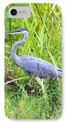 My Blue Heron IPhone Case by Greg Fortier