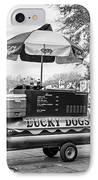New Orleans - Lucky Dogs Bw IPhone Case by Steve Harrington