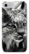 North American Lynx In The Wild. IPhone Case by Bob Orsillo