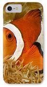 Ocellaris Clown Fish No 1 IPhone Case
