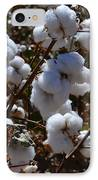 Old Cotton Fields Back Home IPhone Case by Beverly Guilliams