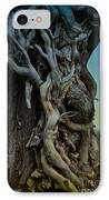 Old Vine IPhone Case by Mary Machare