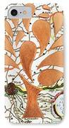 Only As Far As I Seek Can I Go IPhone Case by Nikki Smith