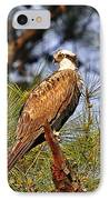 Opulent Osprey IPhone Case by Al Powell Photography USA