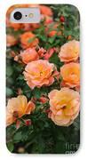 Orange Roses IPhone Case