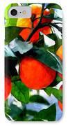 Orange Tree In Springtime  IPhone Case