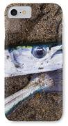 Pacific Needlefish IPhone Case by Aged Pixel