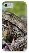 Pacific Tree Frog Among Succulent Plant IPhone Case by David Gn