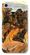 Palms Over Mcway IPhone Case by Adam Jewell