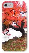 Panorama Of Red Maple Tree, Muskoka IPhone Case by Henry Lin