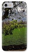 Panoramic Of Winter Lettuce IPhone Case