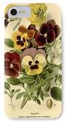 Pansies IPhone Case by Philip Ralley