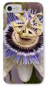 Passiflora Caerulea IPhone Case
