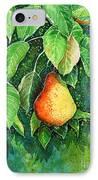 Pear IPhone Case by Zaira Dzhaubaeva