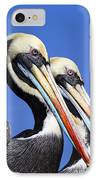 Pelican Perfection IPhone Case by James Brunker