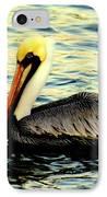 Pelican Waters IPhone Case by Karen Wiles