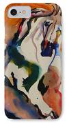 Picasso IPhone Case by Nancy Gebhardt