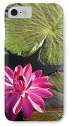 Pink Water Lily II IPhone Case by Heiko Koehrer-Wagner