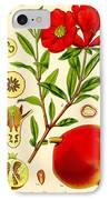 Pomegranate IPhone Case by Georgia Fowler