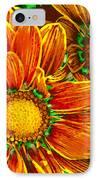 Pop Art Daisies 8 IPhone Case by Amy Vangsgard