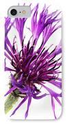 Purple Cornflower IPhone Case by Jo Ann Snover