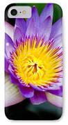 Purple Lotus  IPhone Case by Raimond Klavins