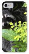 Raccoon Peek-a-boo IPhone Case