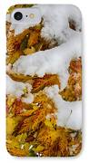 Red Autumn Maple Leaves With Fresh Fallen Snow IPhone Case