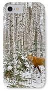 Red Fox In Birches IPhone Case