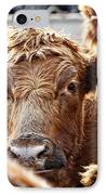 Red Heads On The Ranch IPhone Case by Lincoln Rogers