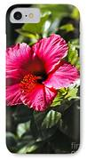 Red Hibiscus IPhone Case by Robert Bales