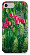 Red Tulips In Skagit Valley IPhone Case