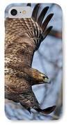 Redtail Hawk IPhone Case by Bill Wakeley