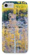 Rocky Mountain Autumn Contrast IPhone Case by James BO  Insogna
