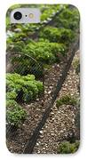 Rows Of Kale IPhone Case