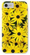 Rudbeckia Fulgida 'pot Of Gold'  IPhone Case by Tim Gainey
