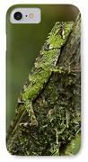 Sabah Eyebrow Lizard Mt Kinabalu Np IPhone Case by Ch'ien Lee