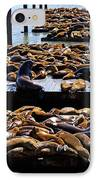 Sea Lions At Pier 39  IPhone Case by Garry Gay