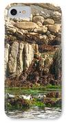Sea Lions In Monterey Bay IPhone Case by Artist and Photographer Laura Wrede