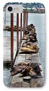 Sea Lions Sleeping IPhone Case by Robert Bales