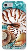 Sea Shells Original Coastal Painting Colorful Nautilus Art By Megan Duncanson IPhone Case by Megan Duncanson