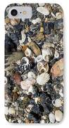 Seaweed And Shells IPhone Case