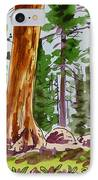 Sequoia Park - California Sketchbook Project  IPhone Case