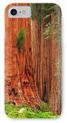Sequoias IPhone Case by Inge Johnsson