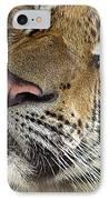 Sleepy Tiger Portrait IPhone Case